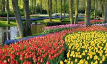 Vẻ lộng lẫy của 10 khu vườn đẹp nhất thế giới
