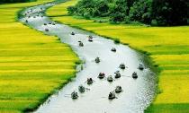 Việt Nam của tôi màu xanh...