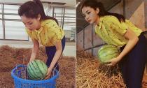 Hoa hậu Kỳ Duyên được khen hết lời khi giúp đồng bào Quảng Nam bán dưa