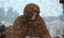 Liều mình để hàng triệu con ong đậu kín người