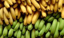 8 thực phẩm gây hại cho tiêu hóa mà bạn không biết