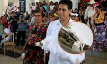 Thị trưởng Mexico cưới cá sấu làm 'vợ'
