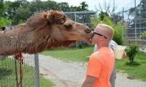 Cười nghiêng ngả với loạt ảnh hài hước về động vật (P2)