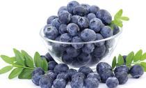 Những loại thực phẩm có tính kháng khuẩn cực tốt