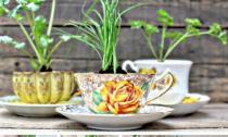 Ý tưởng trang trí nhà tuyệt đẹp từ cốc uống trà