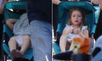 Bé Harper trùm kín mặt nằm ngủ trên xe đẩy