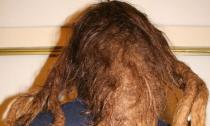 Hài hước với những mẫu tóc 'ai cũng phải ngước nhìn'