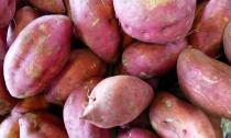 Lý do chính đáng để ăn nhiều khoai lang hơn mỗi ngày