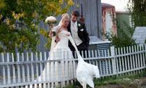11 bức ảnh 'dìm hàng' đám cưới không thương tiếc