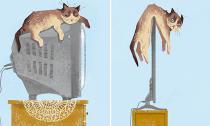 Chùm ảnh cười: Công nghệ làm thay đổi cuộc sống của mèo như thế nào?