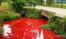 Kinh hoàng nước kênh bị ô nhiễm đỏ như máu