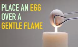 4 trò ảo thuật thú vị với trứng