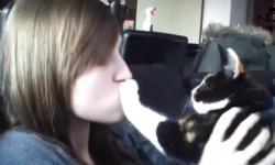Khi mèo... ghét hôn