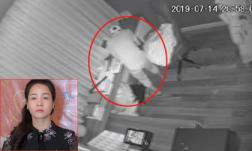 Nhật Kim Anh công khai clip ghi lại toàn bộ quá trình bị trộm đột nhập phá két cuỗm tài sản tích cóp 10 năm
