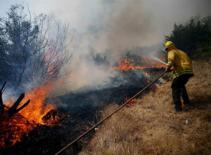 Cháy rừng tại Texas, 4 người chết
