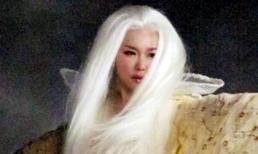 Đau khổ vì tình, Phạm Văn Phương tóc bạc trắng sau một đêm
