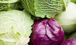 Lý do bắt buộc bạn phải ăn bắp cải