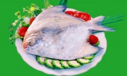 Món ăn thuốc từ cá chim