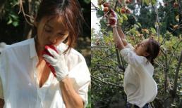 'Ghen tỵ' với cuộc sống viên mãn của Lee Hyori sau kết hôn