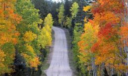 Ngây ngất với mùa thu vàng trên khắp thế giới