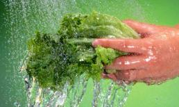 4 sai lầm thường mắc phải khi sử dụng rau xanh