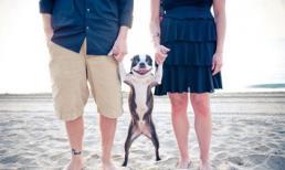 Những bức ảnh gia đình siêu hài hước và đáng yêu