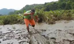 Việc nhẹ lương cao: Cho cá sấu Nam Mỹ ăn mỗi ngày