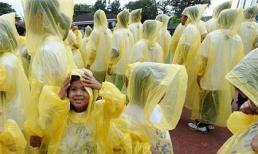 Kinh hoàng áo mưa chứa hóa chất gây hại cho não