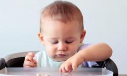 Khám phá hành trình lớn lên của bé từ sơ sinh đến 1 tuổi