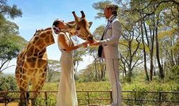 Cặp đôi tổ chức đám cưới 38 lần vòng quanh thế giới