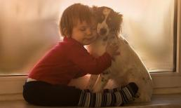 Cậu bé ôm cún cưng lay động trái tim hàng triệu người