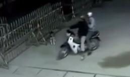 9 pha trộm chó 'máu lạnh' nhất Việt Nam ghi từ camera