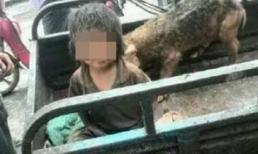 Bé trai 7 tuổi phải sống trong chuồng lợn quanh năm