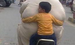 Khoảnh khắc 'khó đỡ' của những người béo phì