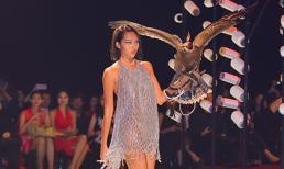 Minh Triệu mang đại bàng lên sàn diễn thời trang