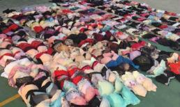 Kẻ biến thái dùng cần câu trộm hàng trăm bộ đồ lót phụ nữ