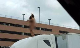 Cô gái cởi đồ trên nóc xe khiến giao thông tắc nghẽn
