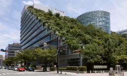 Các kiến trúc vườn trên nóc nhà độc đáo nhất thế giới