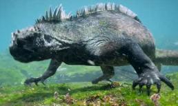 Phát hiện quái vật biển ở quần đảo Galapagos