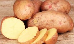 Thực phẩm tự nhiên có tác dụng thay kem chống nắng