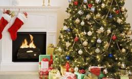 Nguồn gốc và ý nghĩa của Noel (Lễ Giáng Sinh)