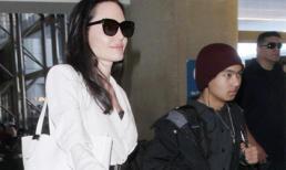 Angelina Jolie bị tố giả mạo giấy tờ khi nhận con nuôi con trai Maddox