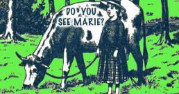 Marie bị lạc trong rừng, bạn có thấy Marie không?
