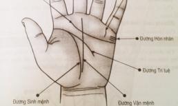 Nhìn đôi bàn tay, chọn ngay được vợ ưng ý, cái gì cũng giỏi xuất sắc