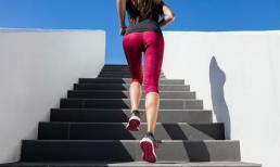 Những lợi ích tuyệt vời của việc đi bộ lên xuống cầu thang