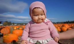 Con gái Lam Trường đáng yêu khi lần đầu tiên tham quan vườn bí ngô cùng mẹ