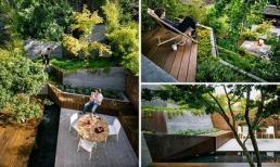 Thiết kế sân vườn kiểu ruộng bậc thang mới lạ khiến bất kỳ ai cũng phải mềm lòng