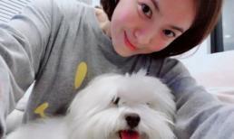 Vừa trở về Hàn Quốc, Song Hye Kyo được thanh minh chuyện bầu bí