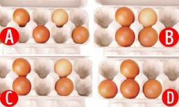 Chọn một trong những cách xếp trứng dưới đây sẽ tiết lộ thế mạnh của bạn là gì