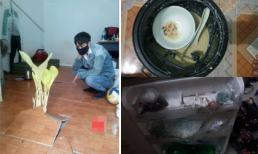 Ám ảnh phòng trọ sau Tết: Nồi cơm điện mốc meo, cây chuối mọc trong nhà